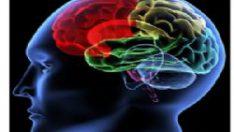 Beynin çözülemeyen 10 sırrı